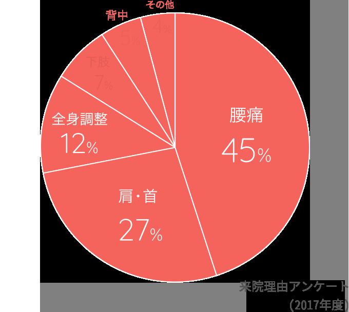 来院理由アンケート結果(2017年度) 腰痛45% 肩・首27% 全身調整12% 下肢7% 背中5% その他4%