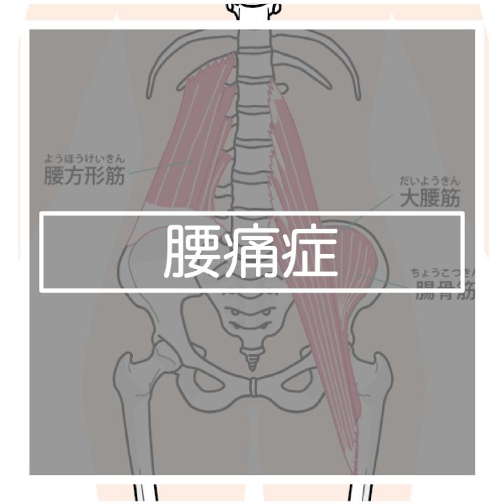 筋 腰 方形 腰方形筋をストレッチして腰痛を和らげよう!ストレッチ方法を徹底解説!
